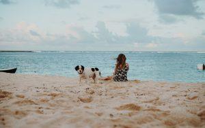 Despedida de soltera con perro